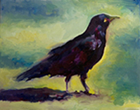 Raven by Tina Christophillis